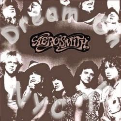 コレクターズCD Aerosmith(エアロスミス78年アメリカツアー NYC)